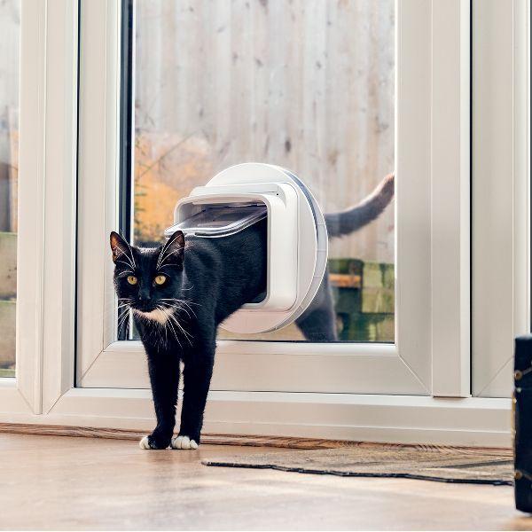Image of Cat Flap